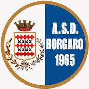 Logo Borgaro Torinese