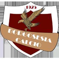 Logo Borgosesia