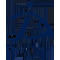 Logo Dinamo Tbilisi