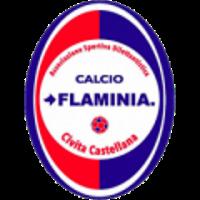 Logo Flaminia