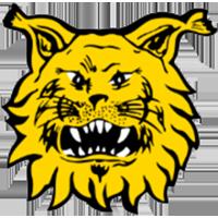 Logo Ilves