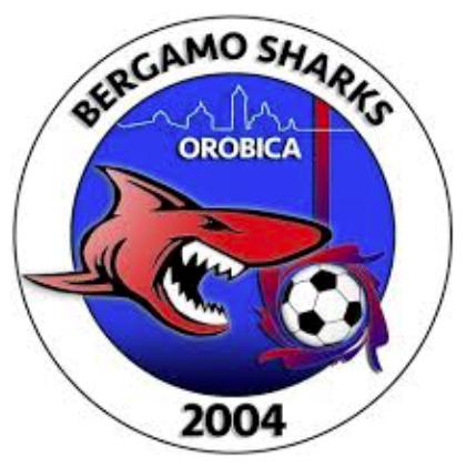Logo Orobica Calcio Bergamo