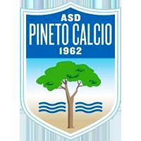Logo Pineto