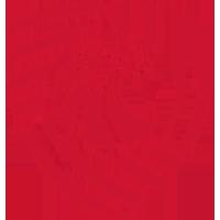 Logo Saburtalo Tbilisi