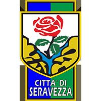 Logo Seravezza Pozzi