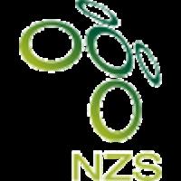Logo Slovenia Under 21