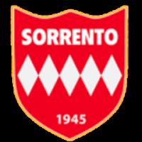 Logo Sorrento