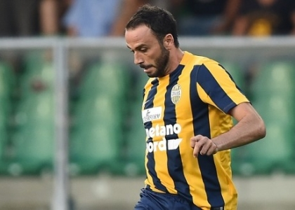 Serie B: Verona-Frosinone 2-0, gol e highlights. Video