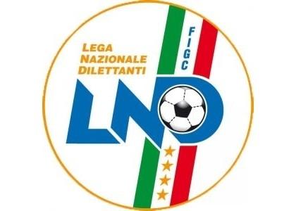 Serie D, 15a giornata: le decisioni del giudice sportivo